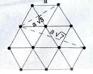 339.jpg